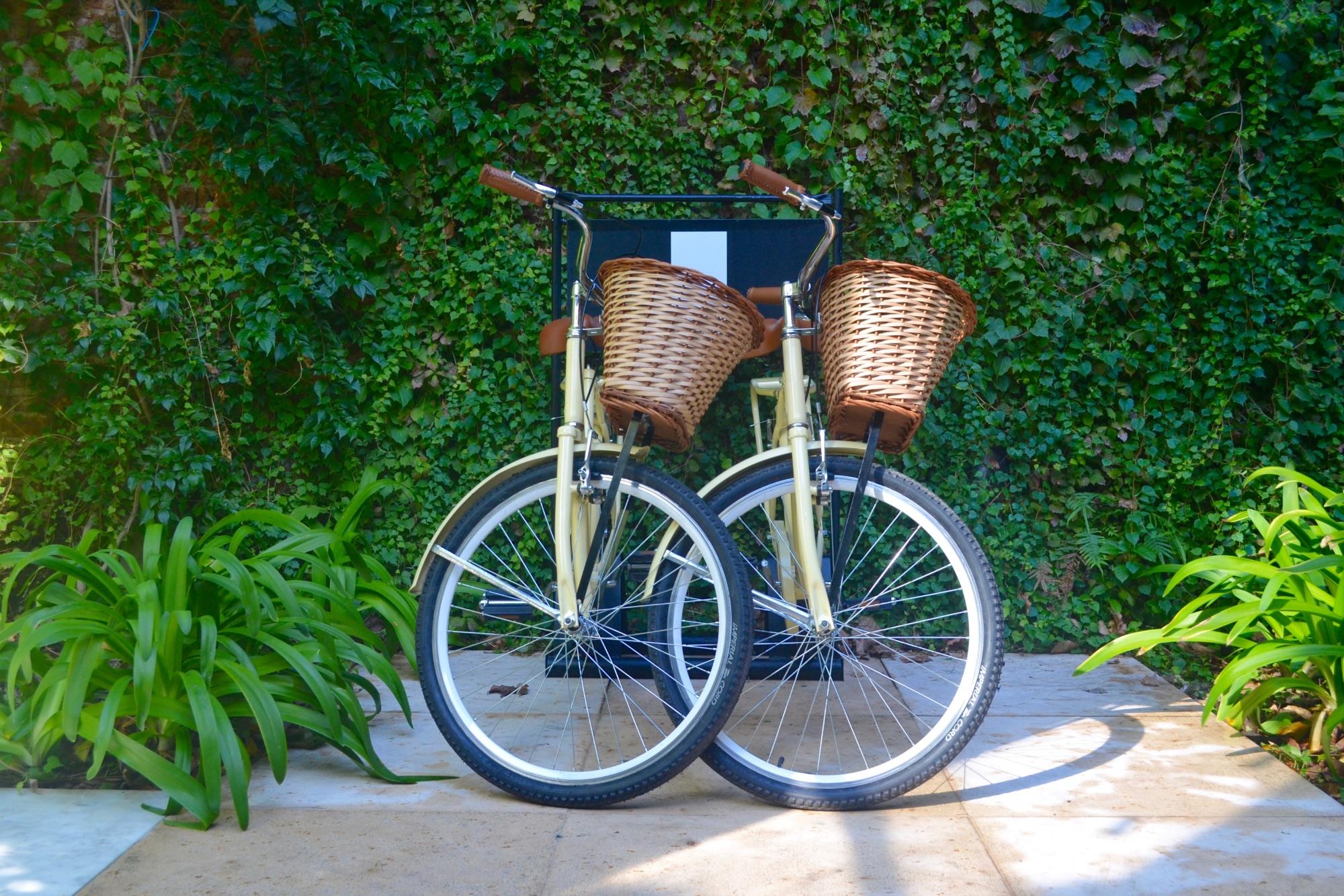 Palo Santo Guest Bikes