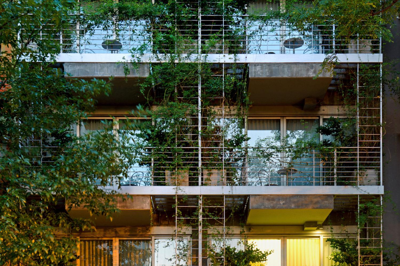 Palo Santo Vertical Gardens